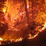 incendio_SAPO3